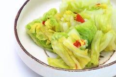 Τουρσιά κινεζικών λάχανων Στοκ Εικόνες