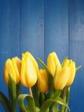 τουλίπες δεσμών κίτρινε&sigma Στοκ Φωτογραφίες