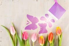 Τουλίπες και πεταλούδες Στοκ φωτογραφία με δικαίωμα ελεύθερης χρήσης