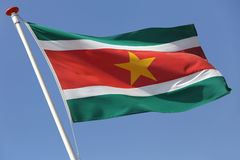 Του Σουρινάμ σημαία στοκ εικόνες