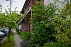 Του χωριού οδός με τα σπίτια στα μπλε βουνά Αυστραλία Στοκ εικόνες με δικαίωμα ελεύθερης χρήσης