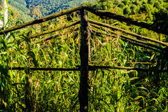 Του χωριού περιβάλλον στην Τουρκία Στοκ Φωτογραφία