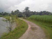 Του χωριού δρόμος στοκ εικόνες με δικαίωμα ελεύθερης χρήσης