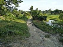 Του χωριού δρόμος στοκ φωτογραφίες με δικαίωμα ελεύθερης χρήσης