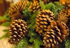 Του FIR Χριστουγέννων καφετί μέρος κινηματογραφήσεων σε πρώτο πλάνο κώνων φυσικό καφετί παραδοσιακών Χριστουγέννων και νέας μιας  Στοκ Εικόνες