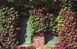 Τούβλινος τοίχος με τις πράσινες πόρτες και τα κόκκινα φύλλα στοκ φωτογραφία