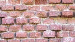 τούβλο τοίχος παλαιός κόκκινος τοίχος τούβλου απόθεμα βίντεο