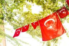 Τούρκος σημαιών Στοκ Εικόνα