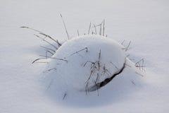 Τούφα χόρτου Στοκ φωτογραφία με δικαίωμα ελεύθερης χρήσης