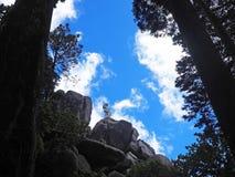Το άγαλμα του πολεμιστή στους κήπους του παλατιού Pena, Sintra, Πορτογαλία στοκ εικόνες με δικαίωμα ελεύθερης χρήσης