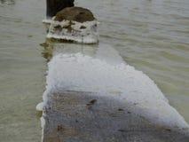 Το άλας εγκαθιστά σε όλα που πέφτουν στο νερό λιμνών Στοκ φωτογραφία με δικαίωμα ελεύθερης χρήσης