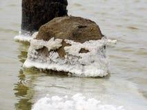 Το άλας εγκαθιστά σε όλα που πέφτουν στο νερό λιμνών Στοκ εικόνες με δικαίωμα ελεύθερης χρήσης