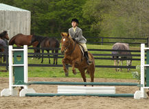 το άλογο κοριτσιών εμφανίζει Στοκ φωτογραφία με δικαίωμα ελεύθερης χρήσης