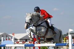 το άλογο που πηδά εμφανίζ&ep Στοκ εικόνα με δικαίωμα ελεύθερης χρήσης