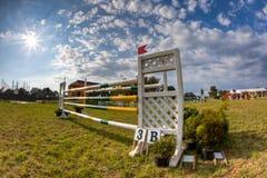 το άλογο που πηδά εμφανίζ&ep Στοκ Εικόνα