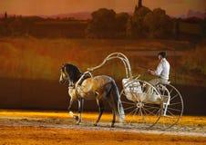 Το άλογο Apassionata εμφανίζει 2013 στοκ εικόνα
