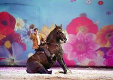 Το άλογο Apassionata εμφανίζει 2013 στοκ φωτογραφία