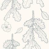 Το άνευ ραφής ευγενές εκλεκτής ποιότητας floral σχέδιο με τη βαλανιδιά φεύγει και ανθίζει Στοκ Εικόνες