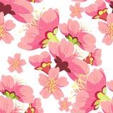 Το άνευ ραφής λουλούδι ανθών κερασιών σχεδίων βλαστάνει τα κινέζικα Στοκ Εικόνα