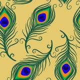 Το άνευ ραφής σχέδιο επιφάνειας φτερών Peacock, φτερά Peacock επαναλαμβάνει το σχέδιο για το υφαντικό σχέδιο, εκτύπωση υφάσματος, ελεύθερη απεικόνιση δικαιώματος