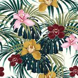 Το άνευ ραφής σχέδιο, το ρόδινο burgundy κίτρινο λουλούδι ορχιδεών και το πράσινο εξωτικό τέρας φοινικών φεύγουν απεικόνιση αποθεμάτων