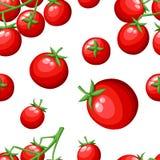 Το άνευ ραφής σχέδιο του φρέσκου λαχανικού ντοματών κερασιών από την κόκκινη ντομάτα οργανικής τροφής κήπων στην πράσινη διανυσμα Στοκ Φωτογραφίες