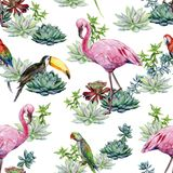 Το άνευ ραφής σχέδιο Watercolor succulents ο παπαγάλος Alexandrine στοκ φωτογραφία με δικαίωμα ελεύθερης χρήσης