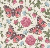 Το άνευ ραφής σχεδίων peacock εκλεκτής ποιότητας υπόβαθρο λουλουδιών πεταλούδων ρεαλιστικό απομονωμένο αυξήθηκε agrostemma χάραξη διανυσματική απεικόνιση