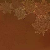Το άνευ ραφής φθινόπωρο αφήνει το πρότυπο Στοκ φωτογραφία με δικαίωμα ελεύθερης χρήσης
