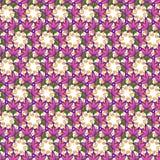 Το άνευ ραφής floral vectror επαναλαμβάνει την ανασκόπηση Στοκ Φωτογραφίες