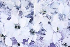 Το άσπρο έγγραφο λουλουδιών για το διακοσμημένο χριστουγεννιάτικο δέντρο, κλείνει επάνω για το υπόβαθρο Στοκ Εικόνες