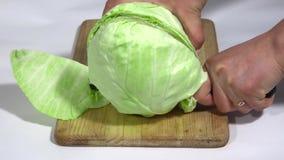 Το άσπρο λάχανο κόβεται στο μισό απόθεμα βίντεο