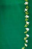 Το άσπρο πλαστικό λουλούδι είναι κάθετη γραμμή Στοκ Εικόνες