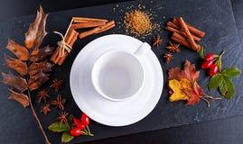 Το άσπρο φλυτζάνι με τα αστέρια anis, η καφετιά ζάχαρη και τα ραβδιά κανέλας στην πέτρα επιβιβάζονται στο θέμα φθινοπώρου Στοκ Εικόνες