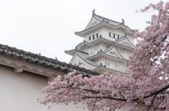 Το άσπρο Castle Himeji Castle στην άνθιση ανθών κερασιών στο πρώτο πλάνο Στοκ Εικόνες