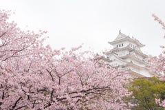 Το άσπρο Castle Himeji Castle στο sakura κερασιών blooson που ανθίζει μέσα Στοκ φωτογραφία με δικαίωμα ελεύθερης χρήσης