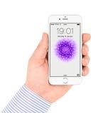 Το άσπρο iPhone 6 της Apple που επιδεικνύει Στοκ Φωτογραφίες