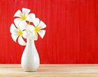 Το άσπρο plumeria ανθίζει στο άσπρο βάζο στο ξύλινο πάτωμα και τον κόκκινο χρωματισμένο τοίχο Στοκ Εικόνα