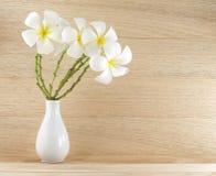 Το άσπρο plumeria ανθίζει στο άσπρο κεραμικό βάζο στο ξύλινο υπόβαθρο πατωμάτων και τοίχων Στοκ εικόνα με δικαίωμα ελεύθερης χρήσης