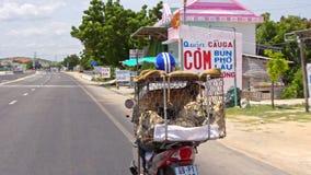 Το άτομο άποψης πίσω πλευρών τα σημάδια παρελθόντος μοτοσικλετών φέρνει τα σκυλιά φιλμ μικρού μήκους