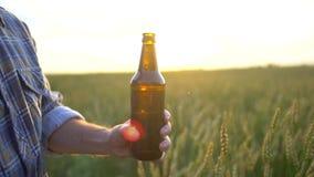 Το άτομο ανοίγει ένα μπουκάλι της μπύρας στο υπόβαθρο του ώριμου τομέα σίτου στο ηλιοβασίλεμα Ένα χέρι ατόμων ` s ανοίγει ένα μπο απόθεμα βίντεο