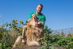 Το άτομο ανοίγει τα σαγόνια ενός λιονταριού στο πάρκο Taigan, Κριμαία σαφάρι, Στοκ Φωτογραφίες