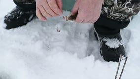 Το άτομο αφαιρεί το γάντζο τα πιασμένα ψάρια απόθεμα βίντεο