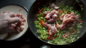 Το άτομο βάζει τα κομμάτια του κοτόπουλου στα κόκκινα και πράσινα πιπέρια βίντεο απόθεμα βίντεο