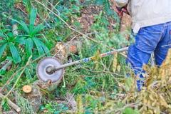 Το άτομο εμπόρων ξυλείας είναι τέμνον ξύλο από το πριόνι Στοκ φωτογραφία με δικαίωμα ελεύθερης χρήσης