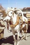 Το άτομο ενός πυροσβέστη κρατά ένα άσπρο άλογο συρμένο σε ένα κάρρο κάτω από το BR στοκ εικόνες