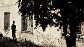 Το άτομο και το δέντρο - σκιαγραφίες στον παλαιό τοίχο στοκ εικόνες