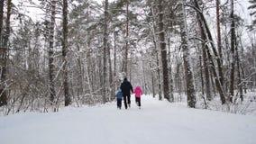 Το άτομο και τα παιδιά κρατούν τα χέρια και τρέχουν στο χειμερινό δάσος σε αργή κίνηση απόθεμα βίντεο