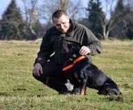 Το άτομο κτυπά το σκυλί του Στοκ εικόνες με δικαίωμα ελεύθερης χρήσης