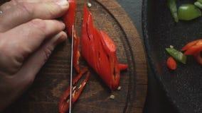 Το άτομο κόβει το τσίλι για την κινηματογράφηση σε πρώτο πλάνο fajita Μεξικάνικο βίντεο τροφίμων απόθεμα βίντεο